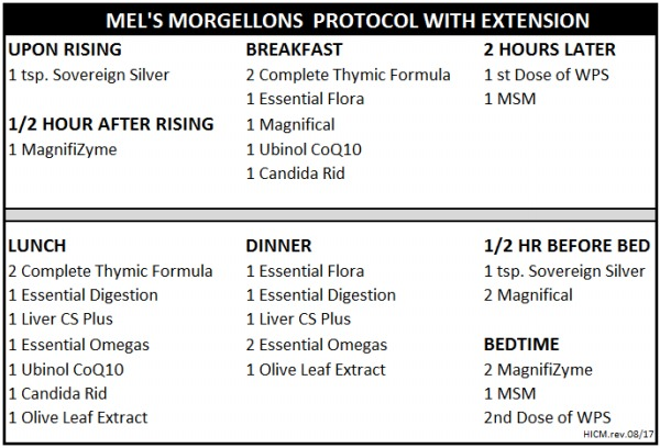Mel S Protocol How I Cured Morgellons
